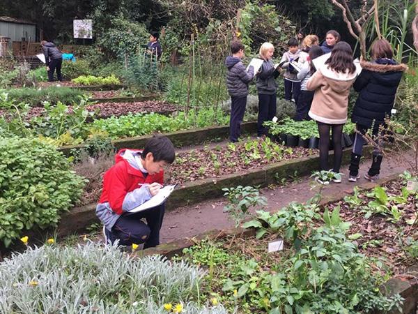 Cuarto y sexto grado visitaron el Jardín Botánico