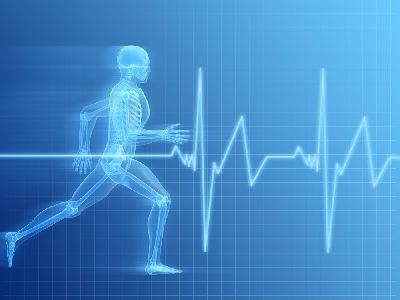 Propuesta de actividad física para adultos