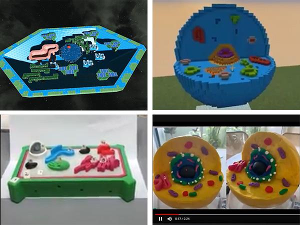 Modelos celulares en formato digital y analógico